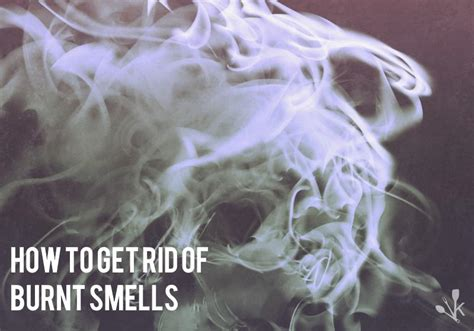 how to get rid of smell in house how to get rid of a smoke smell in a house after a newhairstylesformen2014