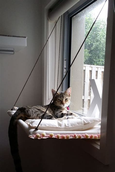 Handmade Cat Beds - how to make a hammock bed breeds picture