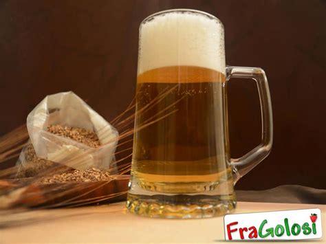fare la birra in casa birra fatta in casa ricetta di fragolosi