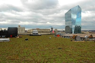 phs young friends host green roof tour pennsylvania horticultural society