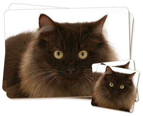Bantal Guling Set Brown Cat chocolate brown cats 2x placemats 2x coasters