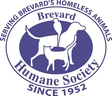 ford county humane society contact us brevard humane society autos post