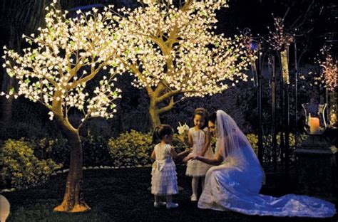 how to light up outdoor trees how to light up outdoor trees 28 images white outdoor
