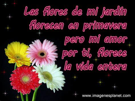 imagenes de flores con frases lindas imagenes bonitas de flores con frases im 225 genes de amor