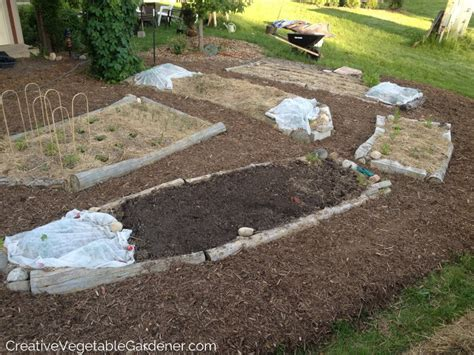 Mulch In Vegetable Garden Creative Vegetable Gardener Why You Should Mulch Your