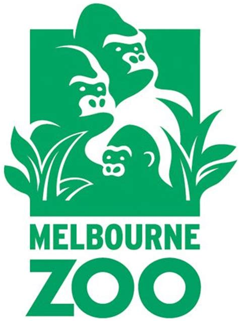 zoo design inspiration 17 best images about creative wild life logo design zoo