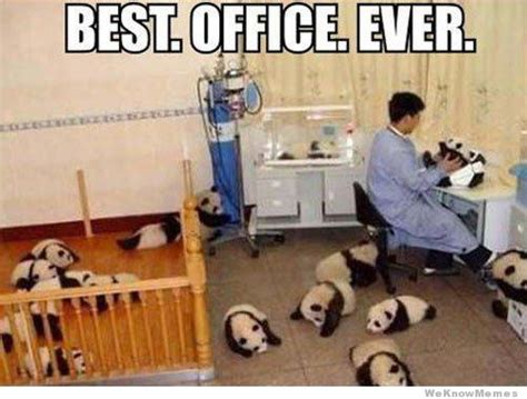 Best Office Memes - best office ever weknowmemes