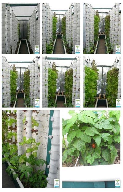 aquaponics aquaponics system and gardening on