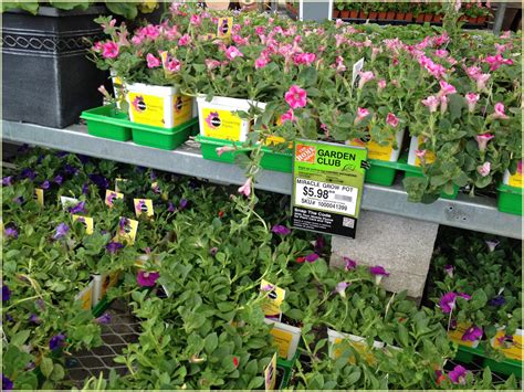 fresh home depot easter hours concept home gallery image