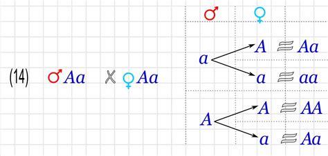 cadenas de markov resumen ciencias de joseleg 6 la ley de la segregaci 211 n independiente