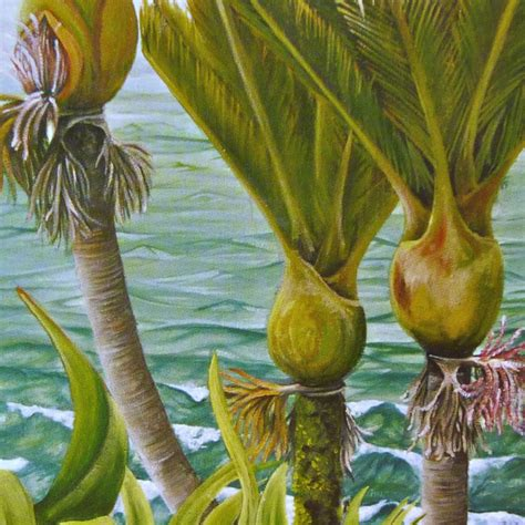 Gift Card New Zealand - gift card three nikau new zealand nikau palm tree felt