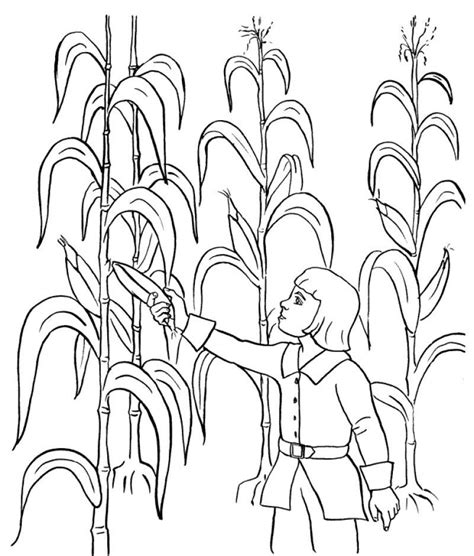 printable coloring pages harvest harvest pictures coloring pages