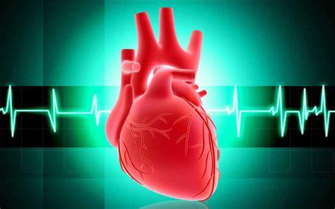 Obat Jantung miracle herbal obat jantung alami