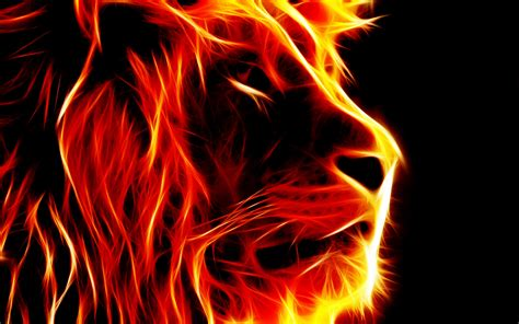 wallpaper abstract lion fire lion wallpapers 183