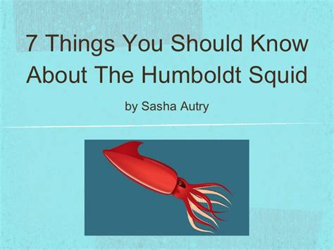 7 Things You Should About The Flu by 7 Things You Should About The Humboldt Squid