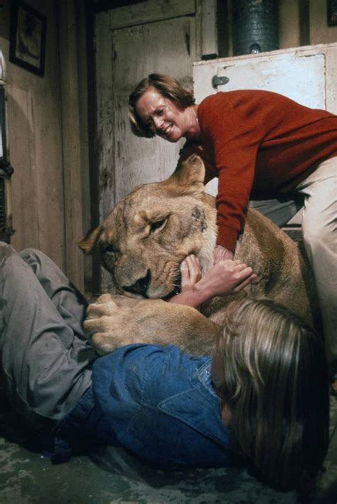 lion film melanie griffith most dangerous movie ever made charges into theaters
