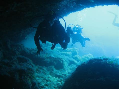 abyss dive center st george harbour picture of abyss dive center paphos