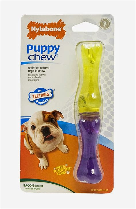 puppy teething toys the modern bark tips the 10 best puppy chew toys for teething puppies