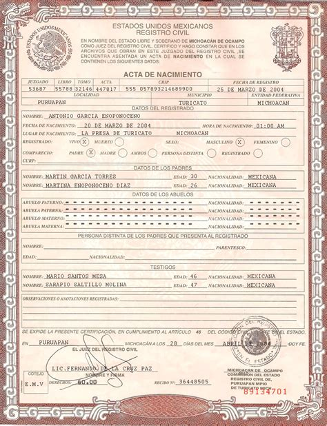birth certificate fake template targer golden dragon co