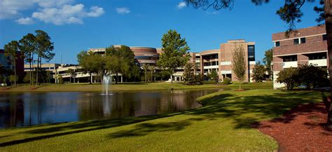 Ofnorth Florida Mba by Of Florida Overview Plexuss