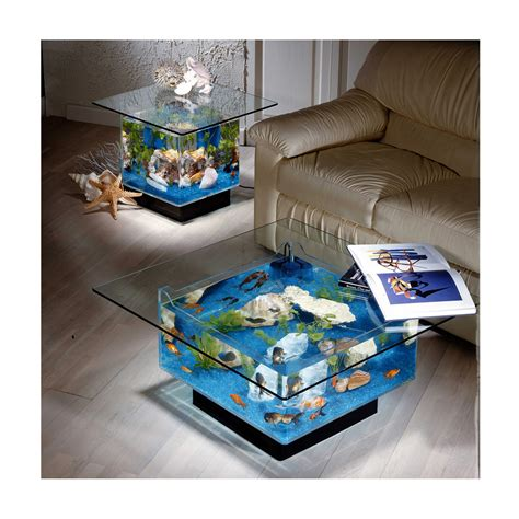 Table Aquarium by 4 Things You Need To About Table Aquariums The