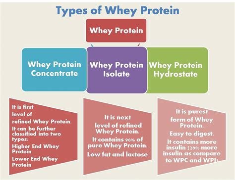 protein types guidelines for whey protein khelmart org it s all
