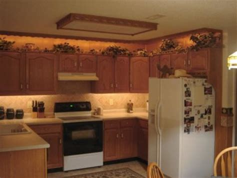Kitchen Accent Lighting Accent Lighting Traditional Undercabinet Lighting Other Metro By Birddog Distributing Inc