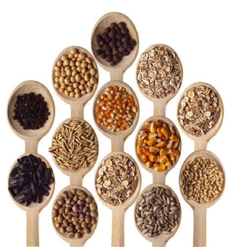 whole grains images with names whole grains archives gamerfitnation