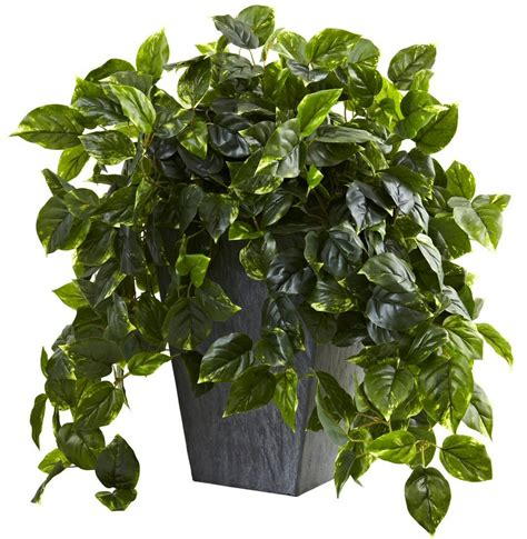 hanging pothos silk plant with slate planter uv resistant
