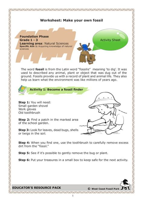 Fossil Worksheets by 28 How Fossils Are Made Worksheet How Fossils Are