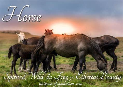 horse symbolism symbolic meaning  horse