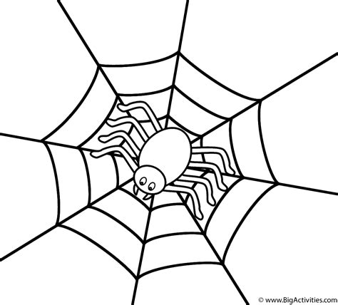 small spider coloring page spider in the center of web coloring page halloween