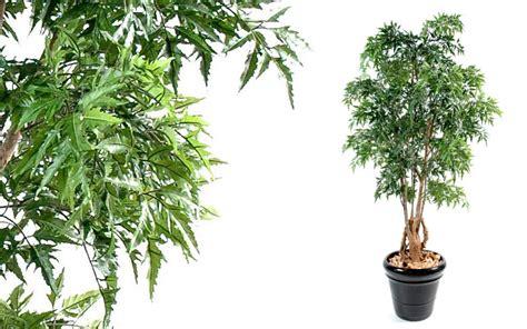 un arbre artificiel d int 233 rieur pour une d 233 coration durable