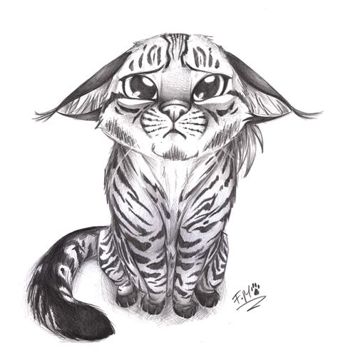 sad cat drawing blank template imgflip