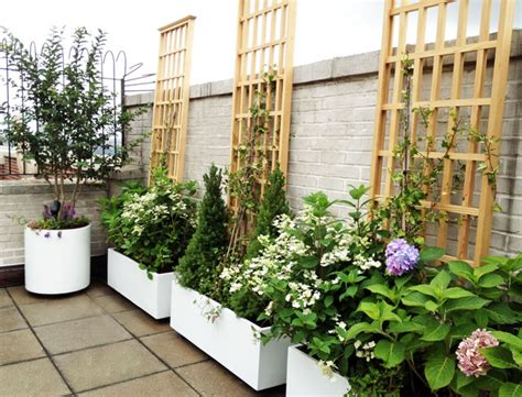 rooftop container gardening manhattan roof garden white planters terrace deck paver