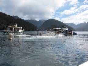 fishing boat death nz boats being towed to bluff after salvage from seabed