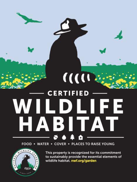 national wildlife federation backyard habitat learning to create small habitats in kitsap thurston