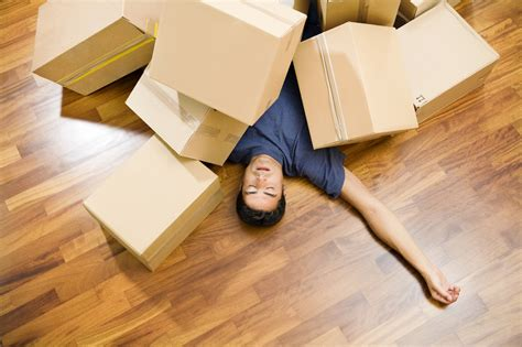 moving with a 5 differences between a freight forwarder and a moving company stumpblog