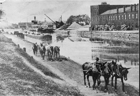 mule pulled canal boat in georgetown mule teams pull canal boats along the erie canal towpath