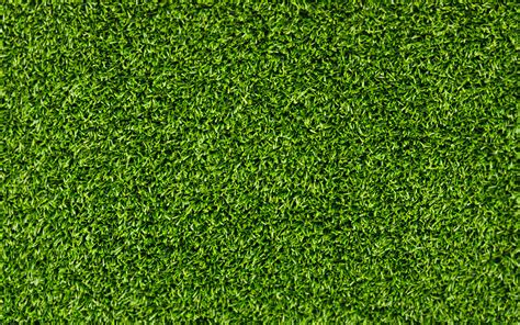 Paper From Grass - grass background wallpaper 1920x1200 53342