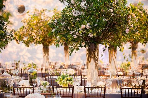 tree branch centerpieces for weddings reception d 233 cor photos greenery tree like wedding