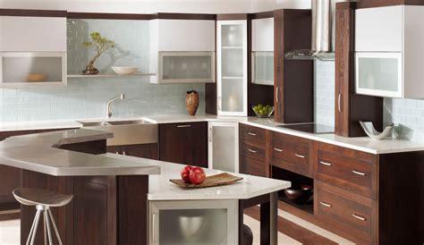 fancy kitchen cabinets kitchen cabinets with distinct modern look plain fancy
