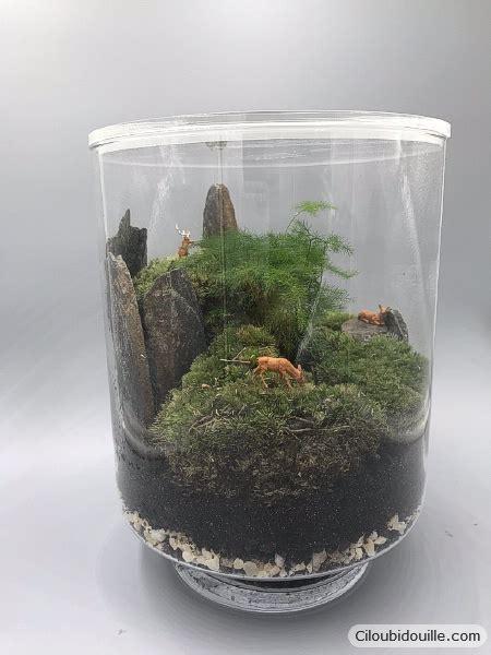 Fabriquer Un Terrarium by Fabriquer Un Terrarium C Est Facile Ciloubidouille
