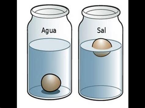 imagen de probeta qu 237 mico experimentos de quimica experimento y qu 237 mica experimento infografia huevo en agua salada el huevo que flota experimento huevo flotador