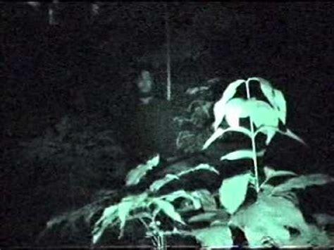 film hantu bondowoso penakan hantu di bondowoso part2 youtube
