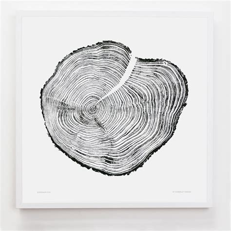 tree ring coloring page endearing tree ring art 11 carvedtree big 2 jpg w 1000 q