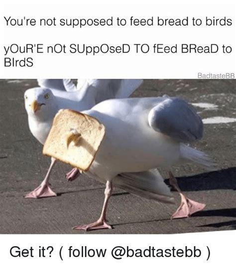 25 best memes about not not memes