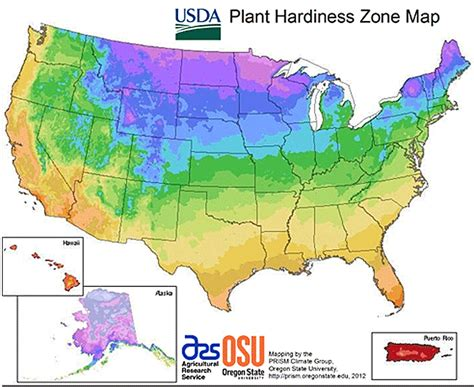 what planting zone do i live in learn what the usda - What Garden Zone Do I Live In