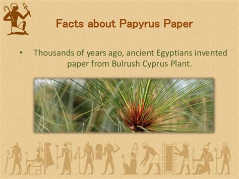 How To Make Papyrus Paper - history of papyrus paper