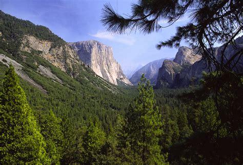 imagenes inspiradoras de la naturaleza cu 225 l es nuestra relaci 243 n con la naturaleza el silencio